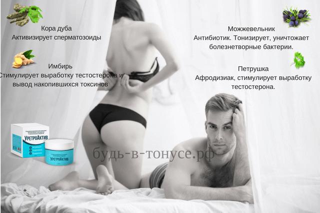 Состав Уретроактива