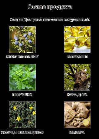 Натуральный состав препарата Уротрин