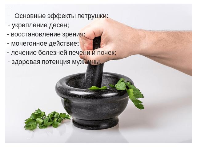 Основные эффекты от пользы петрушки для организма мужчины