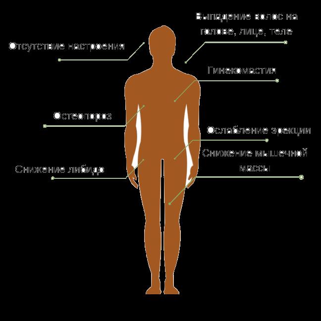 Признаки гормонального сбоя у мужчин
