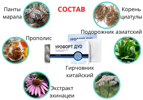 Состав Урофорт Дуо