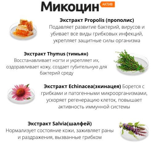 Состав таблеток Микоцин