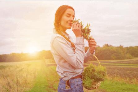 Лечебные травы для женщины