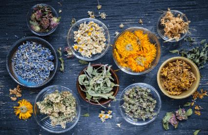 Лечебные травы при менопаузе